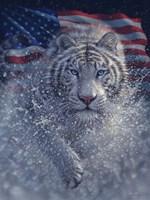 White Tiger America Fine-Art Print
