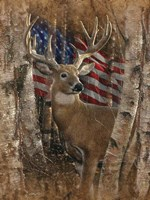 Whitetail Buck America Fine-Art Print
