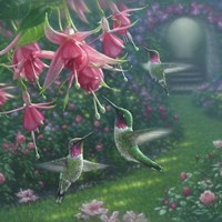 Hummingbird Haven - Square Fine-Art Print