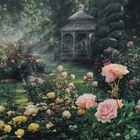 Rose Garden - Paradise Found - Square Fine-Art Print