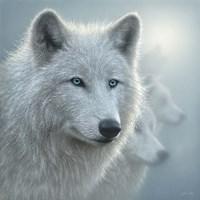 Arctic Wolves - Whiteout Fine-Art Print