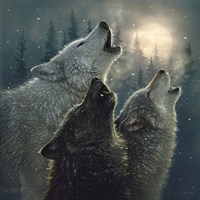 Howling Wolves - In Harmony Fine-Art Print