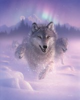 Running Wolves - Northern Lights Fine-Art Print