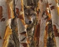 Wolves - The Guardian Fine-Art Print