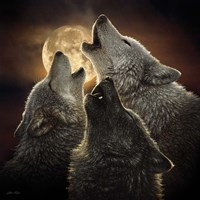 Wolf Trinity Fine-Art Print
