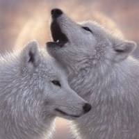 Wolves - Love Song Fine-Art Print