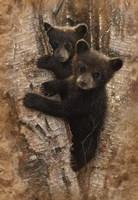 Curious Cubs Fine-Art Print