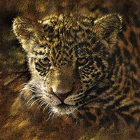Jaguar Cub on Bark Fine-Art Print