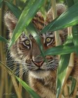 Tiger Cub - Peekaboo Fine-Art Print