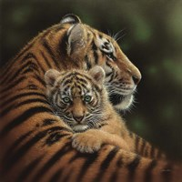 Tiger Mother and Cub - Cherished Fine-Art Print
