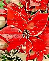 Poinsettia Red Fine-Art Print