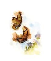 Butterflies V Fine-Art Print