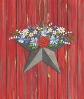 Barn Star Fine-Art Print