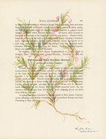 Wild Rosemary Fine-Art Print