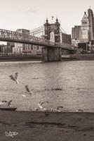 Suspension Bridge I Fine-Art Print