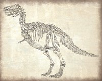 T-Rex Skeleton Fine-Art Print