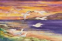 Seagull Sunset Fine-Art Print