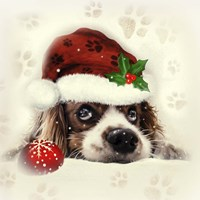 Christmas Puppy Fine-Art Print