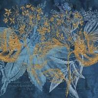 Teal Garden Summer Fine-Art Print