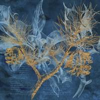 Teal Garden Winter Fine-Art Print