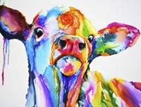 Do These Colours Make My Calves Look Fat Fine-Art Print