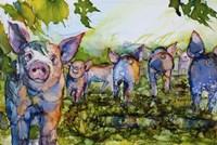 Pig Tales Fine-Art Print