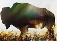 Roaming the Plains Fine-Art Print