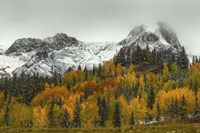 A Rocky Mountain Autumn Fine-Art Print