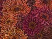Gerbera Orange Red Fine-Art Print