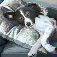 Couch Collie Fine-Art Print