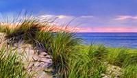 Cape-Dune Sunset Fine-Art Print