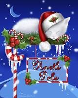 North Pole Kitten Fine-Art Print