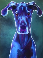 Great Dane - Blue Fine-Art Print