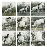 Jumping Horse Fine-Art Print
