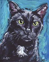 Cat Black Cat Expressive Fine-Art Print