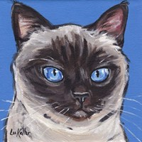 Cat Siamese On Blue Fine-Art Print