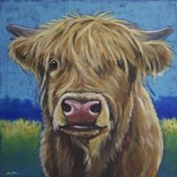 Cow Fergus Scottish Higland Cow Fine-Art Print