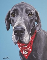 Great Dane Jake Fine-Art Print