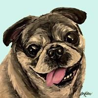 Pug On Turquoise Fine-Art Print