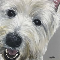 West Highland Terrier Fine-Art Print