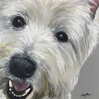 West Highland Terrier Fine-Art Print