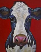 Cow Georgia Fine-Art Print