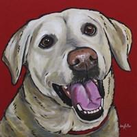 Lab Marley Yellow Labrador Fine-Art Print