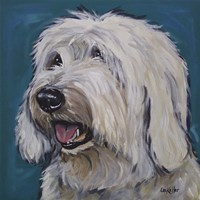 Old English Sheep Dog Rooney Teal Fine-Art Print