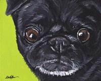 Black Pug On Green Fine-Art Print