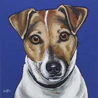 Jack Russell Buster Fine-Art Print