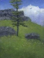 Lone Tree Fine-Art Print