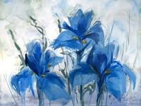 My Blue Heaven Fine-Art Print
