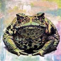 Toad Color Fine-Art Print