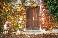 Autumn Wooden Doorway in Prague Fine-Art Print